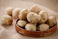 イチオシ食材「北海道産 じゃがいも きたかむい」