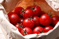 イチオシ食材「北海道産 ミニトマト」