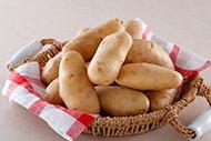 イチオシ食材「北海道産 メークイン」